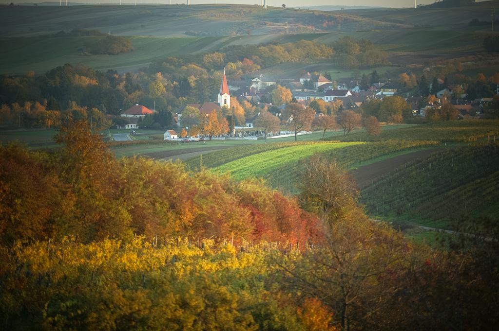 Weinviertel Weinrieder